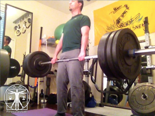 Fringe Sport Hybrid Bar Review - Minimal Flex at 205lb