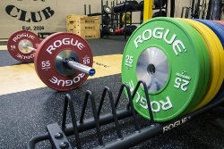 Rogue Competition Bumper Plates 250px
