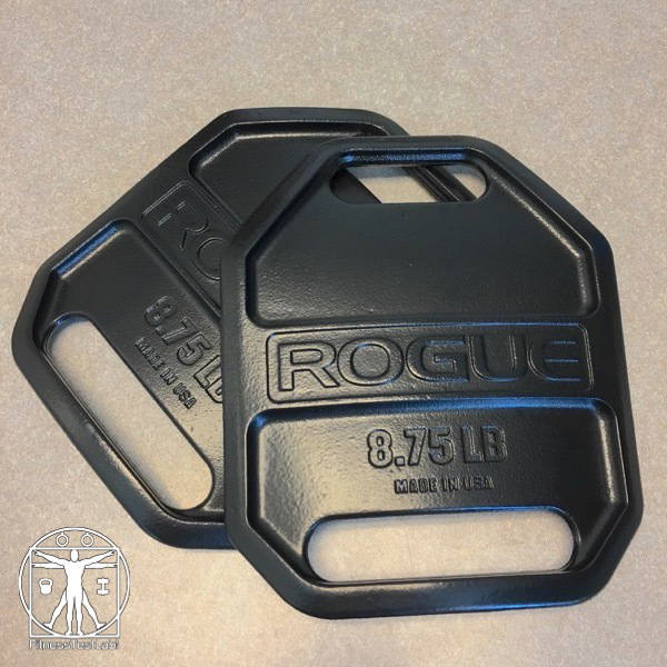 Best Weight Vests for Crossfit - Rogue Fitness Cast Weight Vest Plates Review