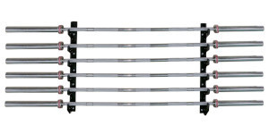 Titan Fitness Barbell Gun Rack